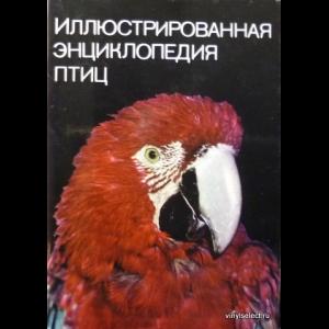 Ганзак Ян - Иллюстрированная Энциклопедия Птиц
