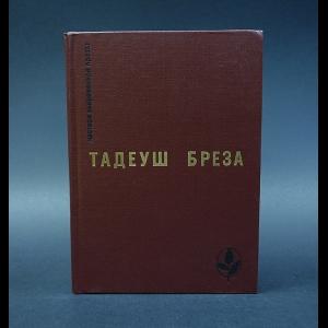 Бреза Тадеуш - Стены Иерихона. Лабиринт