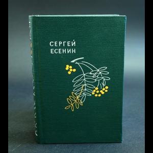 Есенин С.А. - Словесных рек кипение и шорох
