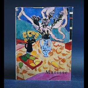 Radulescu Neagu - Matisse