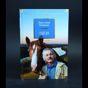 Калинин Анатолий - Цыган