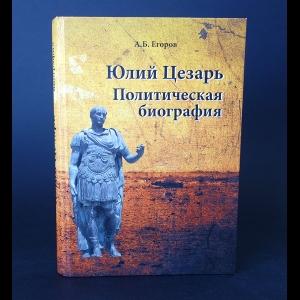 Егоров А.Б. - Юлий Цезарь Политическая биография