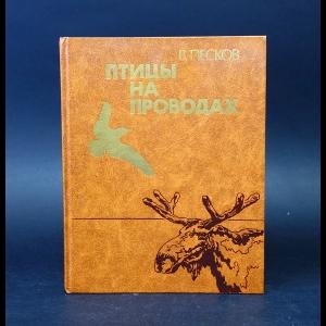 Песков В. - Птицы на проводах