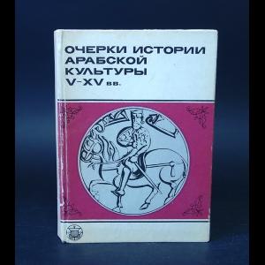 Авторский коллектив - Очерки истории арабской культуры V-XV вв.