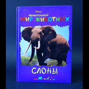 Авторский коллектив - Disney's Удивительный мир животных. Слоны