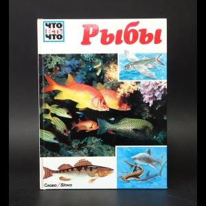 Коу Джеффри  - Рыбы