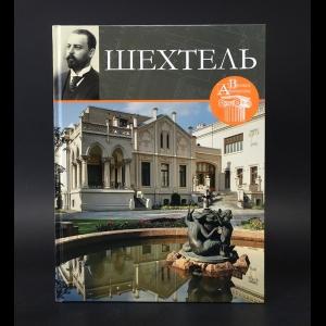 Печенкин Илья Евгеньевич - Шехтель