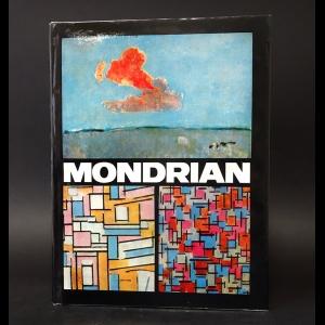 Stoichita V.I. - Mondrian