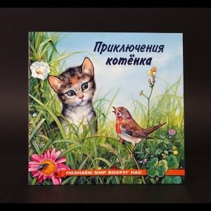 Гурина И.В. - Приключение котенка