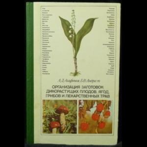 Агафонов А. Д., Андрест Б. В. - Организация заготовок дикорастущих плодов, ягод, грибов и лекарственных трав