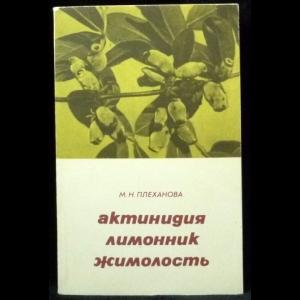Плеханова М.Н. - Актинидия, лимонник, жимолость