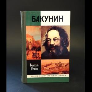 Демин Валерий - Бакунин